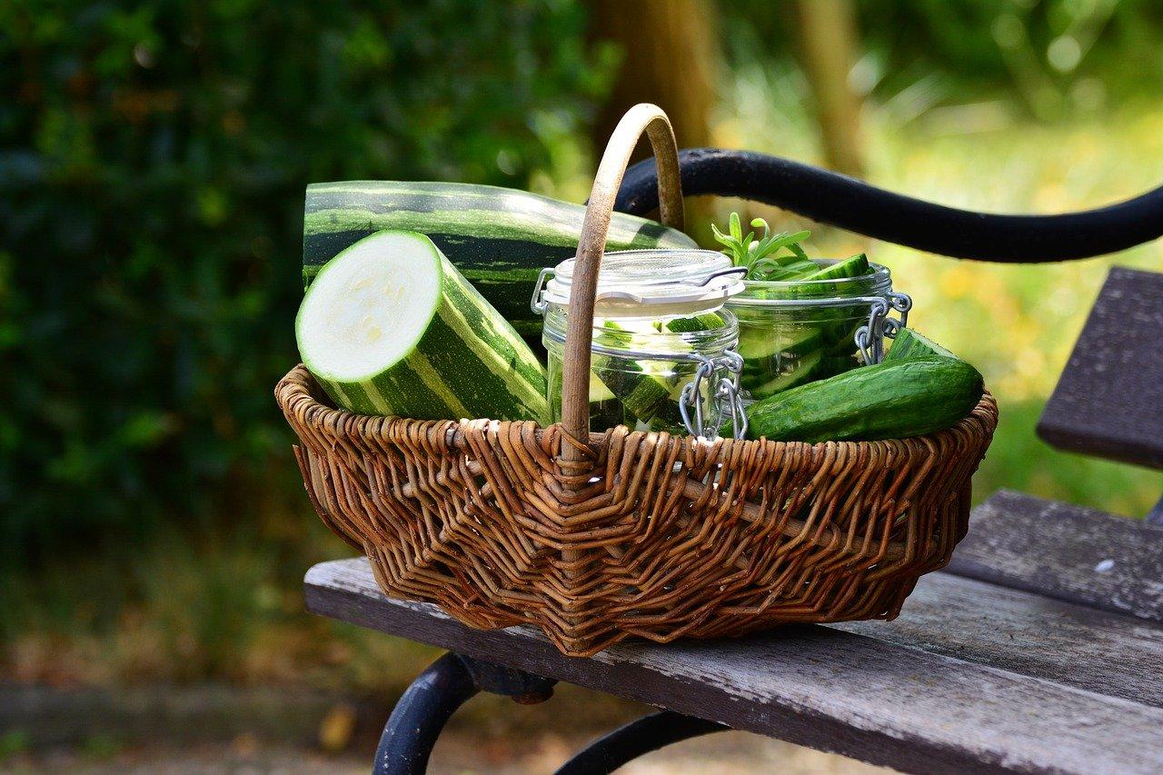 Le zucchine, proprietà e caratteristiche nutrizionali